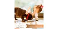 Bebê x animal de estimação. Qual a importância desse convívio?